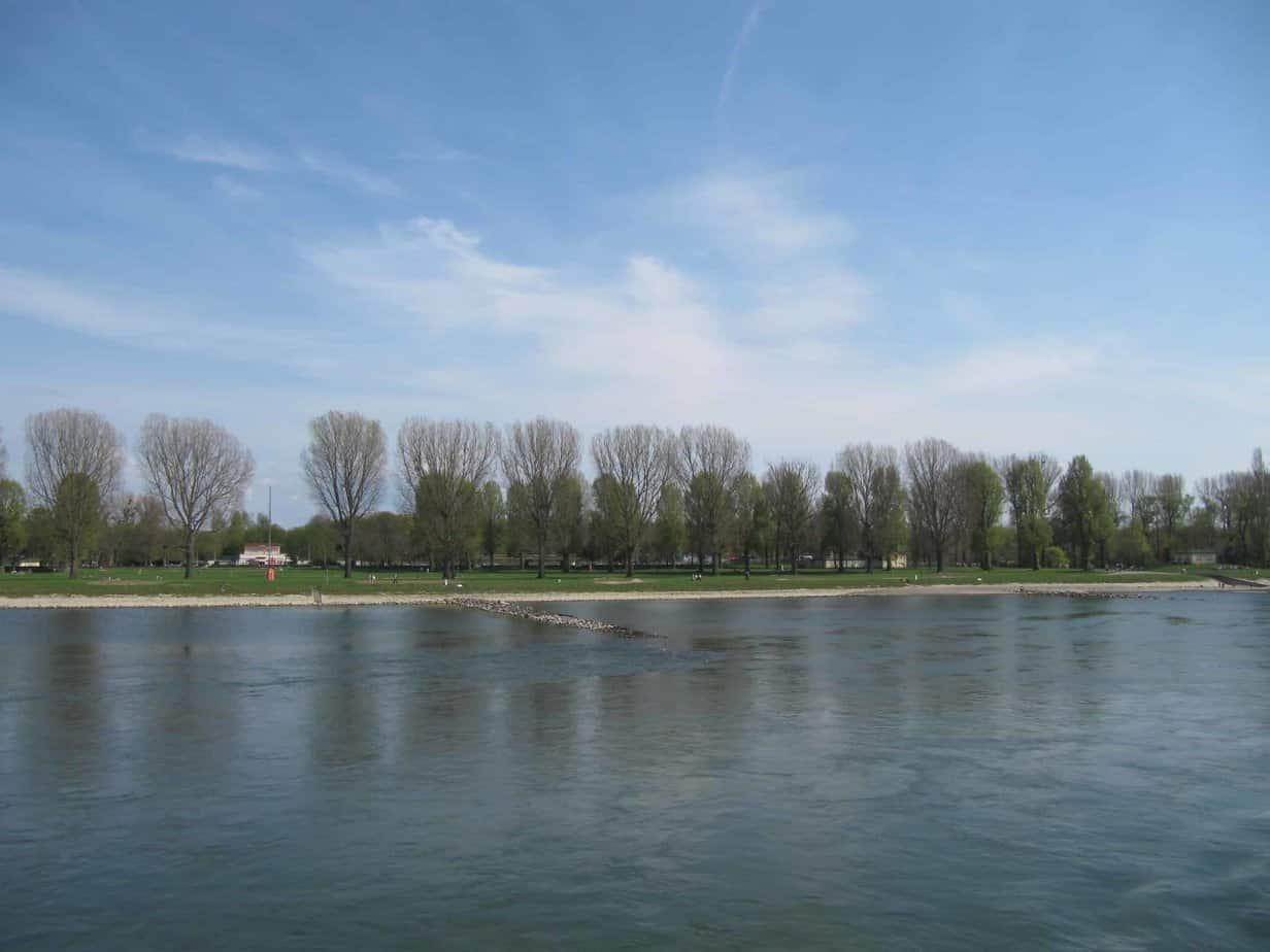 Rheinabschnitt Rappenwört